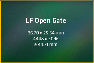 large format open gate